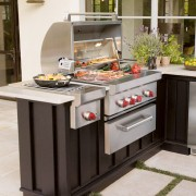 Wolf Gas Grill